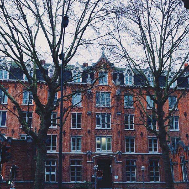 school in lille - 7