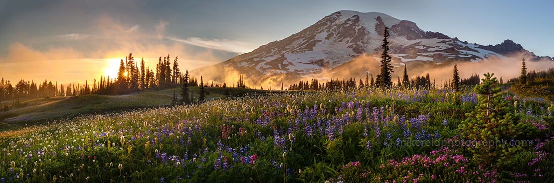 Mount%20Rainier%20Sunset%20Wildflower%20Meadows