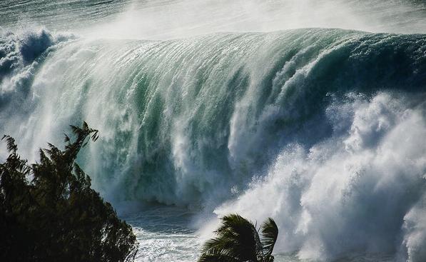 WindowSeat Hawaiian Swell from Hawaii Magazine