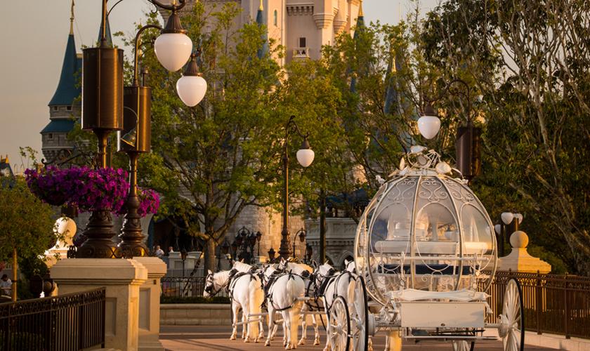 magic-kingdom-park-florida-usa-b