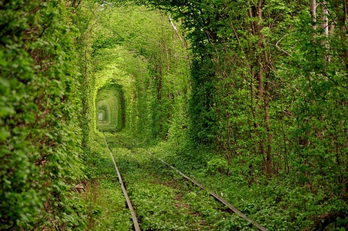 tunnel-of-love