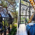 glass treehouse in baguio