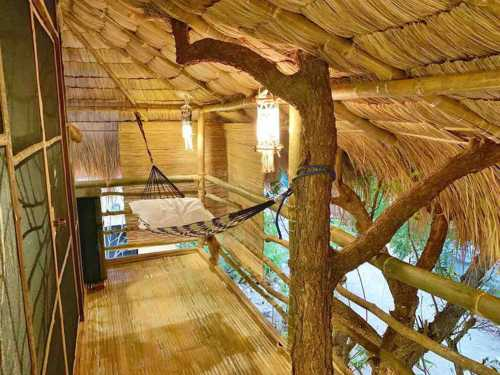 Tree House by the ocean with pool - terrace