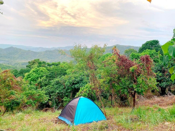 Bamboo Hill Nature tent