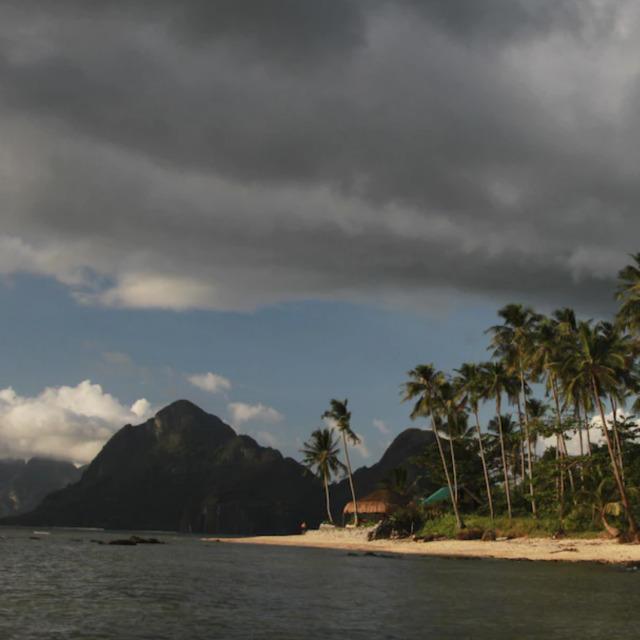 Las Cabanas Beach Resort_Palm trees ocean mountains