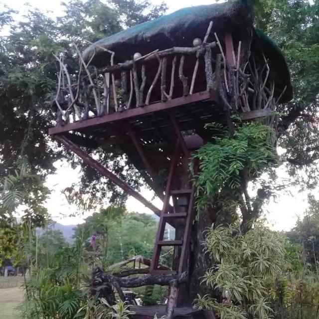Nova Scotia Private Resort treehouse morning
