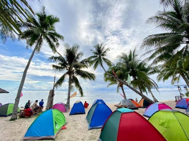 tiny hauz camping